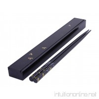 Happy Sales HSKS5/B  Travel Chopsticks  Chopstick case and Chopsticks set  Dragonfly Black - B001J2WFWO