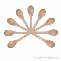 Globeagle 9pcs Deep Mouth Bamboo Spoon Panax Pseudo Ginseng Spoon Mini Tea Spoon - B07BF9TR5G